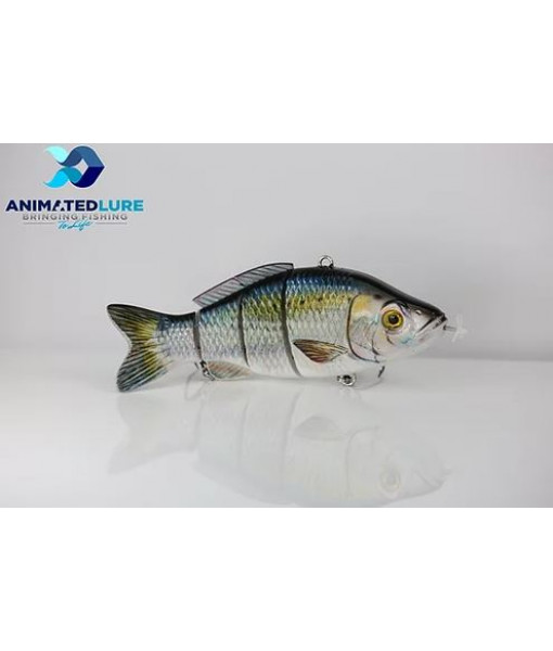 Animated Lure American Shad